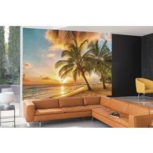 papermoon Fototapete 7 Bahnen, Digitaldruck Barbados Palm Beach, Tapetenbahn 50cm, Spezial Tapetenpapier, BlueBack 350 x 260 cm