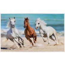 papermoon INFRAROT BILDHEIZUNG 600W, 60X100cm, Pferde im Galopp Infrarotheizung