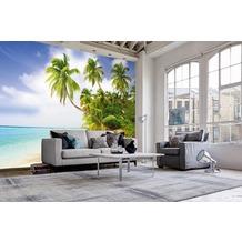 "papermoon Palmtree Fototapete 7 Bahnen ""Silver Editions"", 350 x 260 cm, Palmenstrand 292"