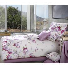 bettw sche blumen lila my blog. Black Bedroom Furniture Sets. Home Design Ideas