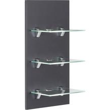 Posseik LED-Panel VIVA mit 3 Glasablagen anthrazit EEK: F