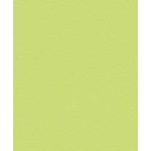 Rasch 469035, Vliestapete, grün