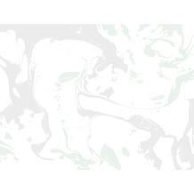 Rasch Digitaldrucktapete Young Artists Wandbild 100396 weiß, hellgrau, grün