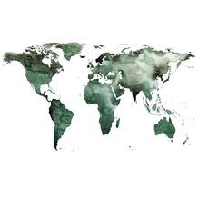 Rasch Digitaldrucktapete Young Artists Wandbild 100556 grün