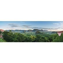 Rasch Digitaldrucktapete Young Artists Wandbild 101171 bunt
