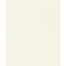 Rasch PVC, Stuktur auf Vlies Cato 800944