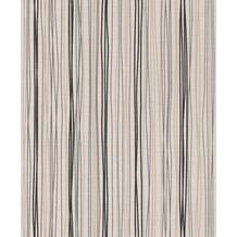 Rasch PVC, Stuktur auf Vlies Plaisirs 2 / 454130