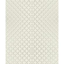 Rasch Tapete Modern Art 610949 Grau 0.53 x 10.05 m