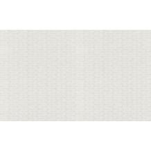 Rasch Vlies (halbfertig) Wallton 2020 119916