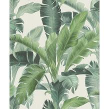 Rasch Vlies Tapete Muster & Motive 536683 Barbara Home Collection II Grün-grasgrün 0.53 x 10.05 m