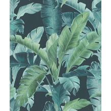 Rasch Vlies Tapete Muster & Motive 536690 Barbara Home Collection II Blau-petrol 0.53 x 10.05 m