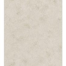 Rasch Vlies Tapete Muster & Motive 550641 Highlands Grau-greige 0.53 x 10.05 m
