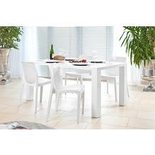 SalesFever Essgruppe 5 tlg. 160x90 cm 393468 Esszimmerstühle weiß