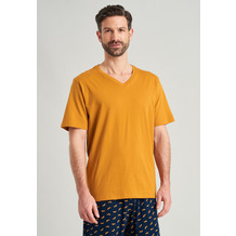 Schiesser Herren T-shirt V-Ausschnitt havanna 169872-305 48