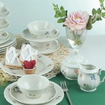 Seltmann Weiden Marie Luise Teeservice für 6 Personen 20-teilig