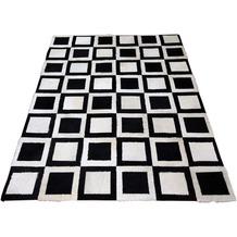 SIT THIS & THAT Teppich 170x240 cm Dess. Bloomington schwarz/weiß
