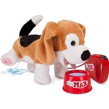 Stadlbauer Pipi Max Beagle