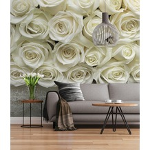 "Sunny Decor Fototapete ""A La Rose"" 368 x 254 cm"