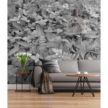 """Sunny Decor Fototapete """"Forest Floor"""" 368 x 254 cm"""