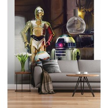 "Sunny Decor Fototapete ""STAR WARS Three Droids"" 184 x 254 cm"