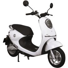 SXT-Scooters Gekko V3