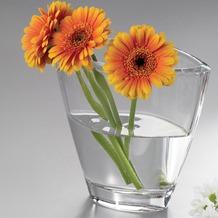 Nachtmann Vase Carre 19 cm hoch