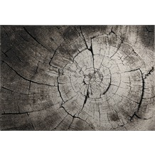Wecon home Teppich Wild Oak WH-2868-957 80 cm x 150 cm