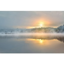 XXLwallpaper Fototapete Foggy Morning 150 g Vlies Basic 2,00 m x 1,33 m
