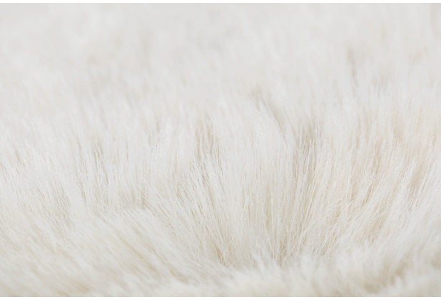Andiamo Teppich Cingoli beige 55 x 80