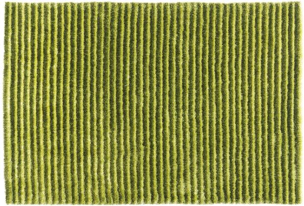 Arte Espina Teppich Felicia 200 Grün 120 x 180 cm