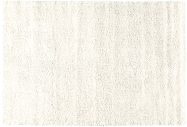 Arte Espina Teppich Grace Shaggy Silber 120 x 170 cm