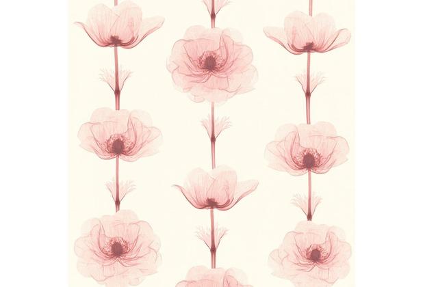 AS Création florale Mustertapete in Röntgen Optik X-Ray Vliestapete creme metallic rot 342733 10,05 m x 0,53 m