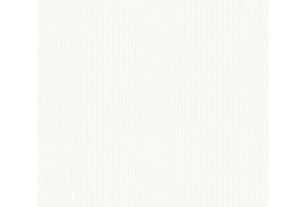 AS Création überstreichbare Vliestapete Meistervlies Pro weiß 354561 10,05 m x 0,53 m
