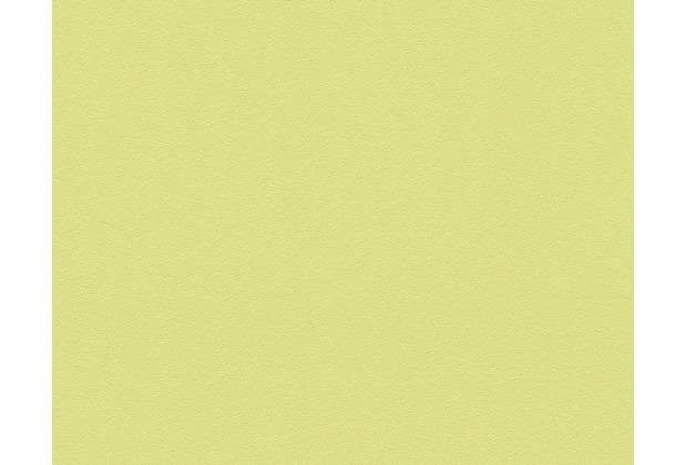 AS Création Unitapete MeisterVlies 5, Vliestapete, grün 309556 10,05 m x 0,53 m