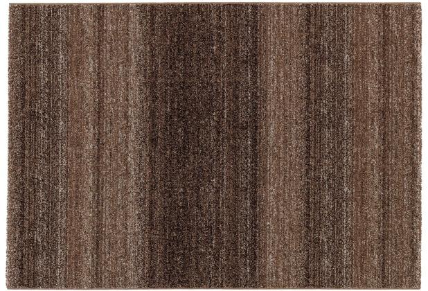 Astra Teppich Carpi Design150 Farbe 60 braun 60 cm x 110 cm