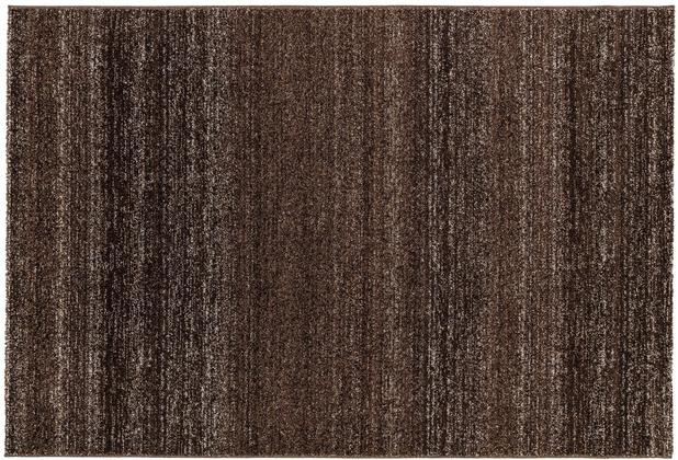 Astra Teppich Carpi Design150 Farbe 64 dunkelbraun 60 cm x 110 cm