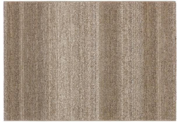 Astra Teppich Carpi Design150 Farbe 6 beige 60 cm x 110 cm
