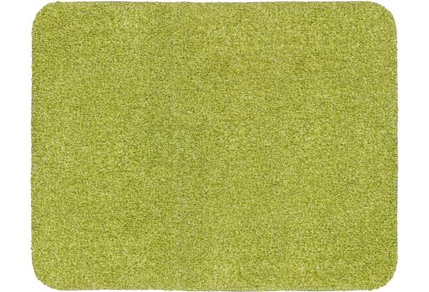 Astra Fussmatte Entra Saugstark grün 75x130