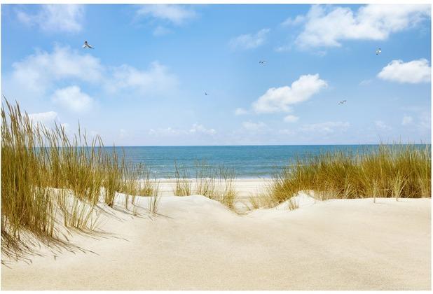 Bilderwelten Fototapete - Strand an der Nordsee, Vliestapete 190x288 cm