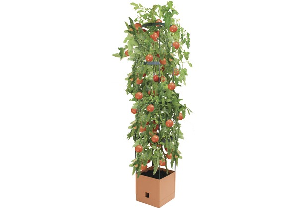 Bio Green MAXITOM Pflanzenturm terracotta