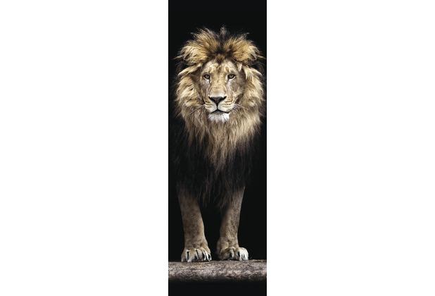 Bönninghoff Kunstdruck gespannt auf Keilrahmen, Löwe