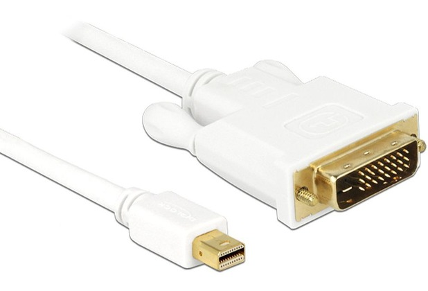 DeLock Kabel Displayport mini Stecker > DVI 24pin Stecker 2m
