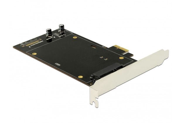 DeLock PCI Express x1 Karte für 2 x SATA HDD / SSD beidseitig