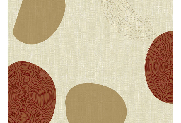 Duni Papier-Tischsets Earthy 30 x 40 cm 250 Stück