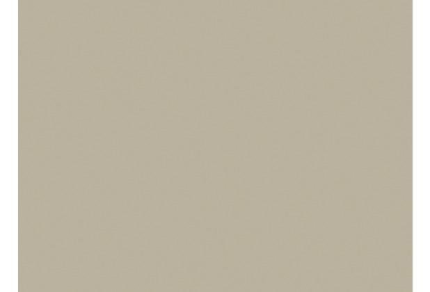 Duni Papier-Tischsets greige 35x 45 cm 250 Stück