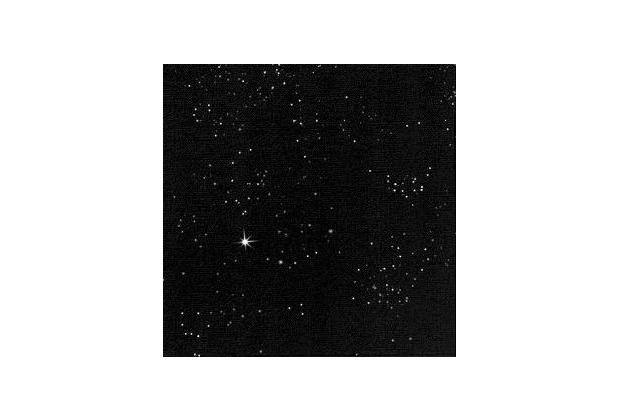 Duni Dunilin-Servietten Brilliance schwarz 40 x 40 cm 45 Stück