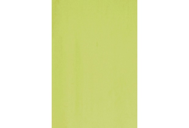 Elbersdrucke Flächenvorhang Feel Good Uni 03 grün 60 x 245 cm