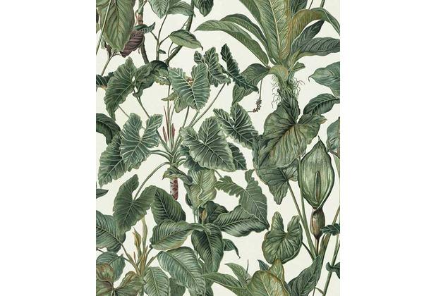 Erismann Strukturtapete auf Vlies 630307 Paradisio Muster/Motiv grün