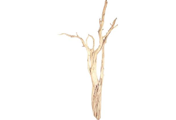 fleur ami Kunstpflanze Ghostwood, sandgestrahlt, verzweigt, 180-200 cm