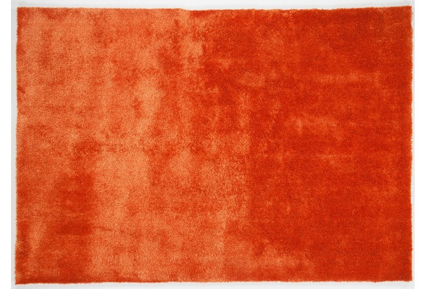 Gino Falcone Teppich Alessia Alessandro UNI 450 terra 160 x 230 cm
